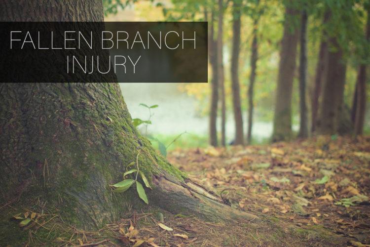 injured-by-fallen-branch